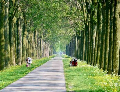 Private day tours from Amsterdam