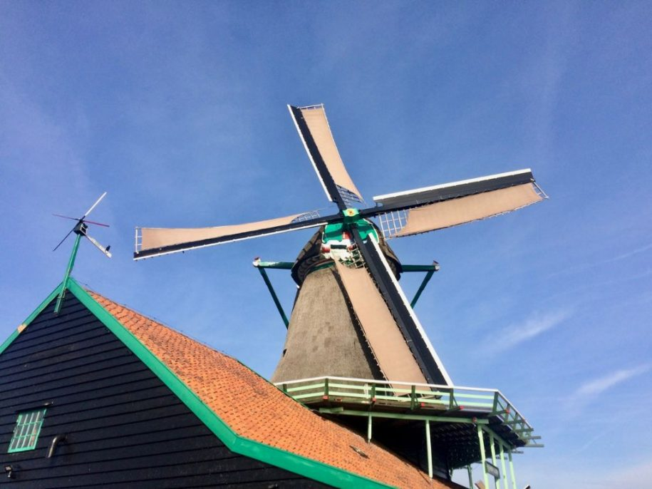 Visit windmills in Holland