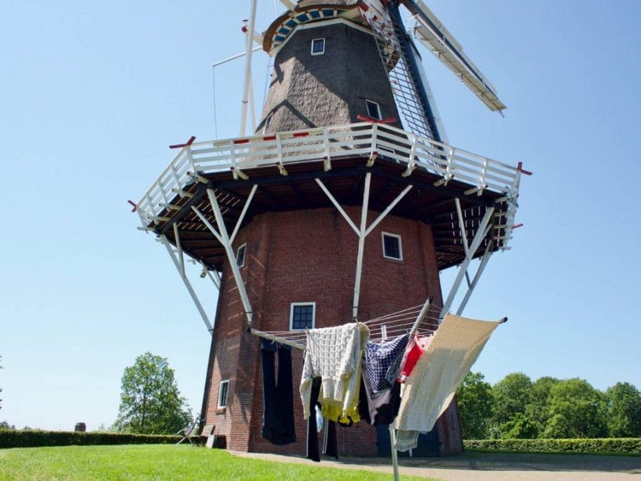 Windmill tour from Amsterdam