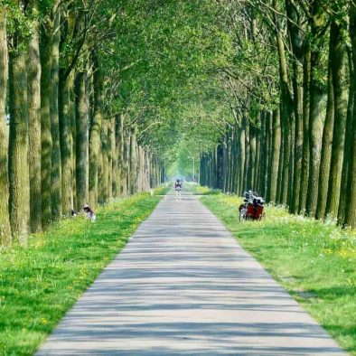 Holland reclaimed land Beemster
